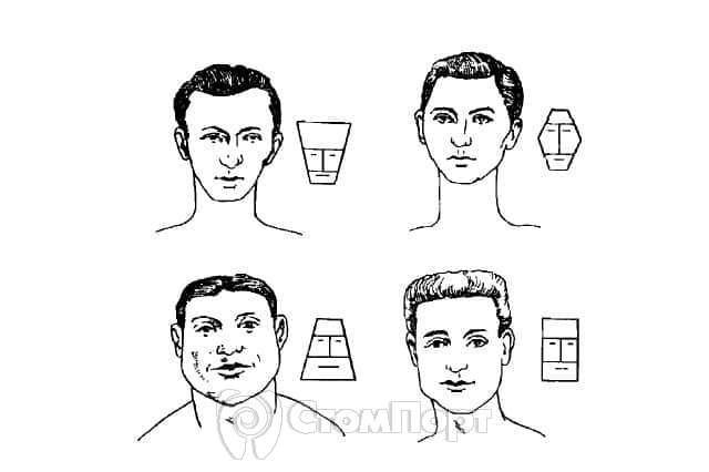 Типы лица по Бауэру