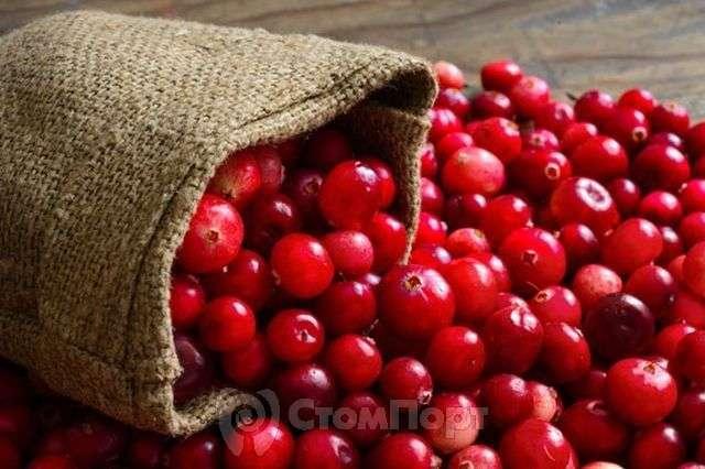 Экстракты ягод подавляют активность бактерий зубного налета
